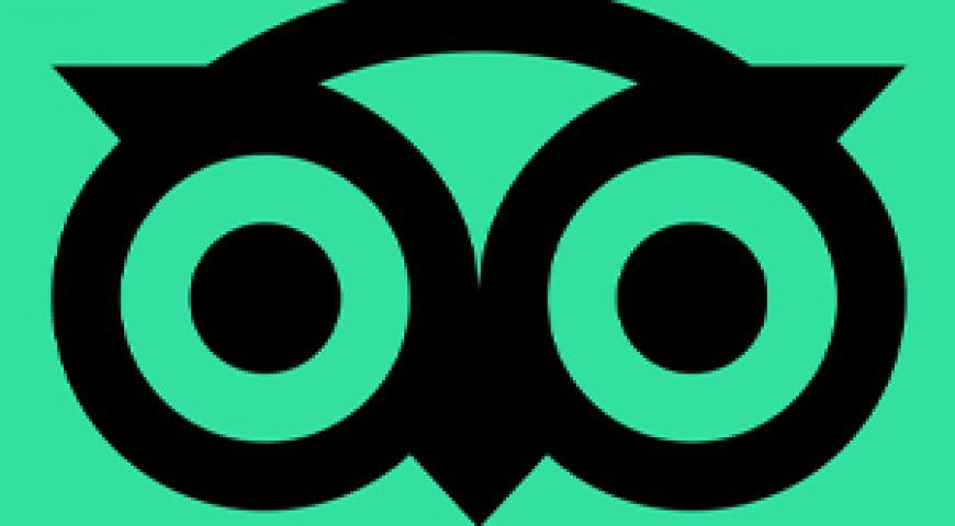 trio advisor logo
